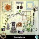 Countryspring1_small