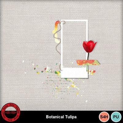 Botanicaltulipa__7_