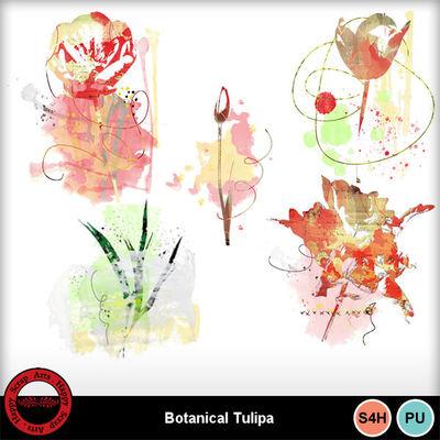 Botanicaltulipa__4_