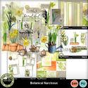 Botanicalnarcissus__6__small