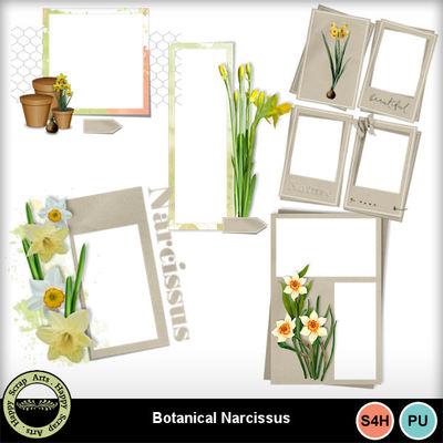 Botanicalnarcissus__4_
