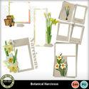 Botanicalnarcissus__4__small