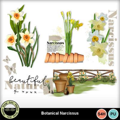 Botanicalnarcissus__5_