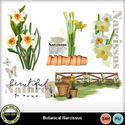 Botanicalnarcissus__5__small