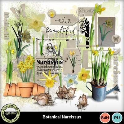 Botanicalnarcissus__1_
