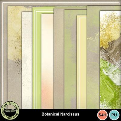 Botanicalnarcissus__2_