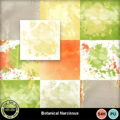 Botanicalnarcissus__3_