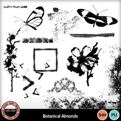 Botanicalalmonds__3_