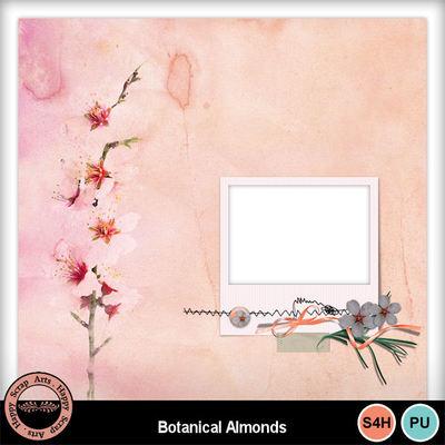 Botanicalalmonds__8_