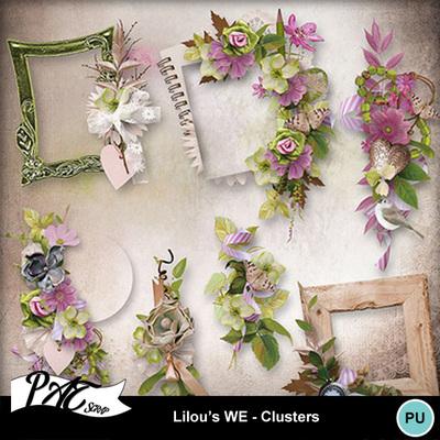 Patsscrap_lilou_s_we_pv_clusters