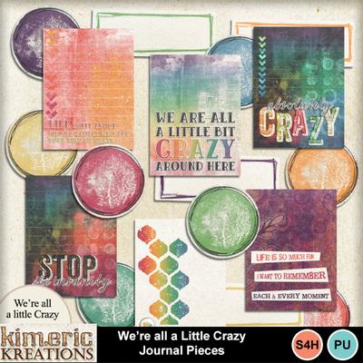 All_a_little_crazy_journal-1