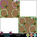 Candy_cane_holly_frame-tll_small