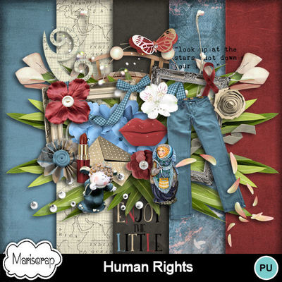 Msp_human_rights_pvmms