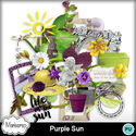 Msp_purple_sun_pv_small