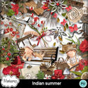 Msp_indian_summer_pv_small