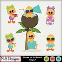 Ducks_on_the_beach_ca_small