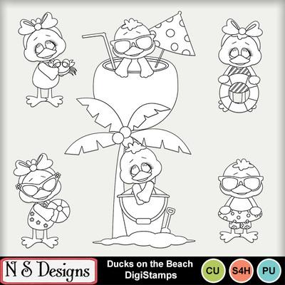 Ducks_on_the_beach_ds