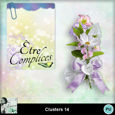 Louisel_clusters14_pv