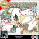 Liz-landingcl_small