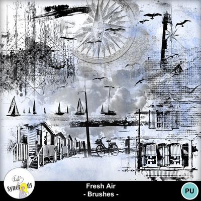 Si-freshairbrushes-pvmm-web