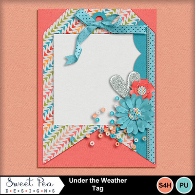 Spd_under_the_weather_journalcard