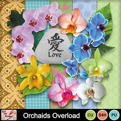 Orchaids_overload_preview