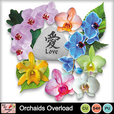 Orchaids_overload_elements_preview