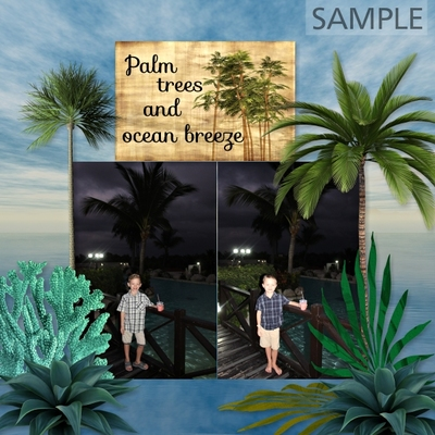 Tropical_travel_bundle-012