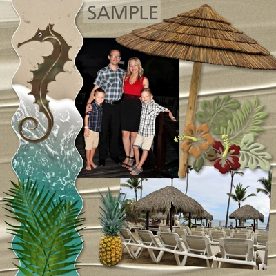 Tropical_travel_bundle-014