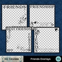 Friends_overlays-01_small