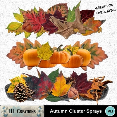 Autumn_cluster_sprays_-_01