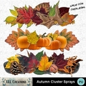 Autumn_cluster_sprays_-_01_small