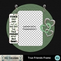 True_friends_frame_-_01_small