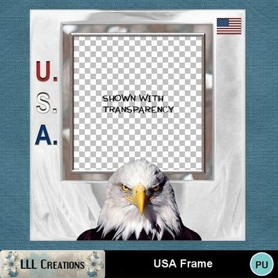 Usa_frame_-_01