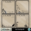 Cat_overlays_1_-_01_small