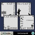 Cat_overlays_2-01_small