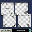 Cat_overlays_3-01_small