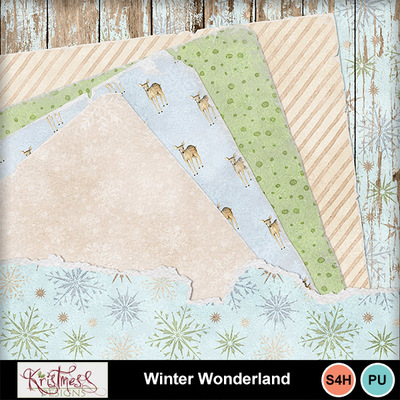Winterwonderland_shby