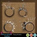 Fancy_frames-tll_small