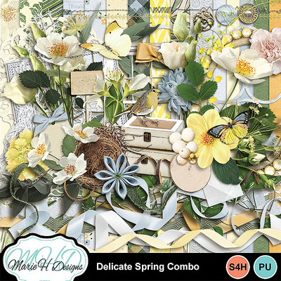 Delicate_spring_combo_01