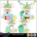 Birthday_bunny_boys-tll_small
