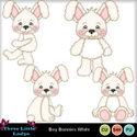Boy_bunnies_white-tll_small