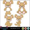 Boy_bunnies_brown-tll_small