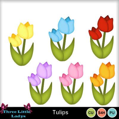 Tulips-tll