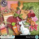 Bunny-tracks-2_1_small