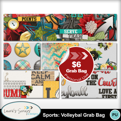 Mm_ls_sportsvolleyballgrabbag