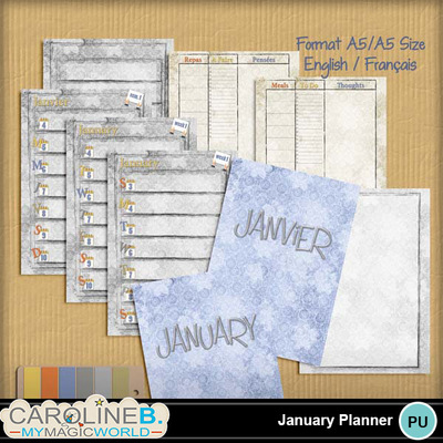 January-a5-planner-r2p_1
