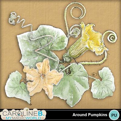 Around-pumpkins_1