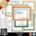 Terryridgeframes_small