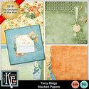 Terryridgestackedpapers_small